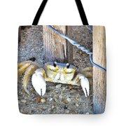 The Sandcrab - Seeking Shelter Tote Bag