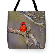 The Scarlet Letter Tote Bag