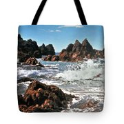 The Sea Abounds Tote Bag