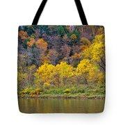The Season Of Yellow Leaves Tote Bag