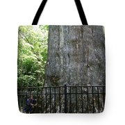 The Senator Tote Bag