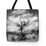 The Sentinal South Coyote Buttes Tote Bag
