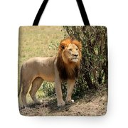 King Of The Savannah Tote Bag