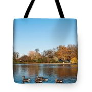 The Serpentine Ducks Tote Bag by Luis Alvarenga