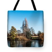 The Serpentine Seagulls Tote Bag by Luis Alvarenga