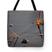 The Shine Of Your Eyes Tote Bag