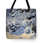 The Short Eared Owls Flew In Tote Bag