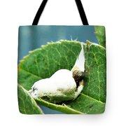 The Shy Cockatoo Tote Bag