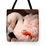 The Shy Flamingo Tote Bag