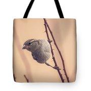 The Sideways Sparrow Tote Bag