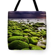 The Silence After The Storm Tote Bag