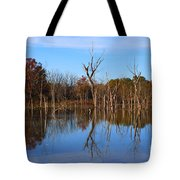 The Silence Of Fancher Davidge Tote Bag