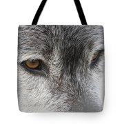 The Silver Gleam Tote Bag