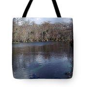 The Silver River Tote Bag