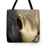 The Singing Seal Tote Bag
