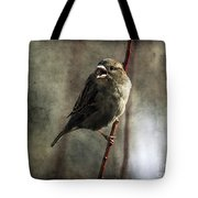 The Singing Sparrow Tote Bag
