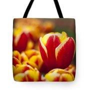 The Single Big Tulip Tote Bag