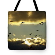 The Sky Opened Tote Bag