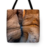 The Slot II Tote Bag