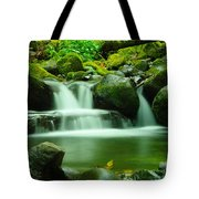 The Small Water Tote Bag