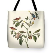 The Smallest Birds Tote Bag
