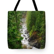 The Snowqualmie River Tote Bag