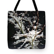 The Snowy Tree Tote Bag