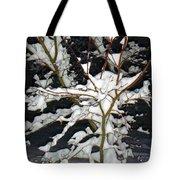 The Snowy Tree II Tote Bag