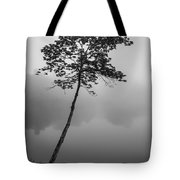 The Solitary Tree Tote Bag
