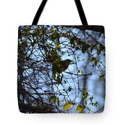 The Song Of Winter Tote Bag