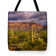The Sonoran Golden Hour  Tote Bag