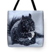 The Sought After Prize Tote Bag