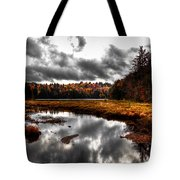 The South End Of Cary Lake Tote Bag