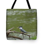 The Southern Kingfisher Side View Tote Bag