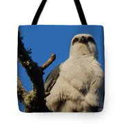 New Orleans  Southern Osprey Tote Bag