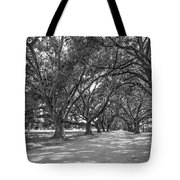 The Southern Way Bw Tote Bag