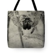 The Spider Series Xii Tote Bag