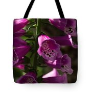 The Splendor Of Foxgloves Tote Bag