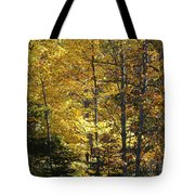 The Splendor Of Yellow   Tote Bag