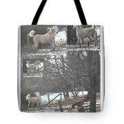 The Stallion Lives In The Country Tote Bag
