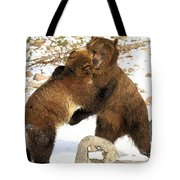 The Stand Off Tote Bag
