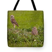 The Stares Of The Burrowing Owls Tote Bag
