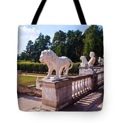 The Statues Of Archangelskoe Estate. Russia Tote Bag