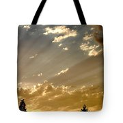 The Storm Is Pending Tote Bag