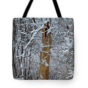 The Strength Of The Elderly Tote Bag