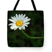 The Sun Is Better Over Here Tote Bag