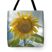 The Sun Is Out Tote Bag