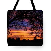 The Sun Sets For Mike Tote Bag