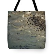 The Sun Worshippers No. 2 Tote Bag