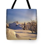 The Sunset Tote Bag by Aged Pixel